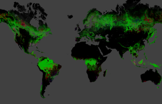 Global map of deforestation