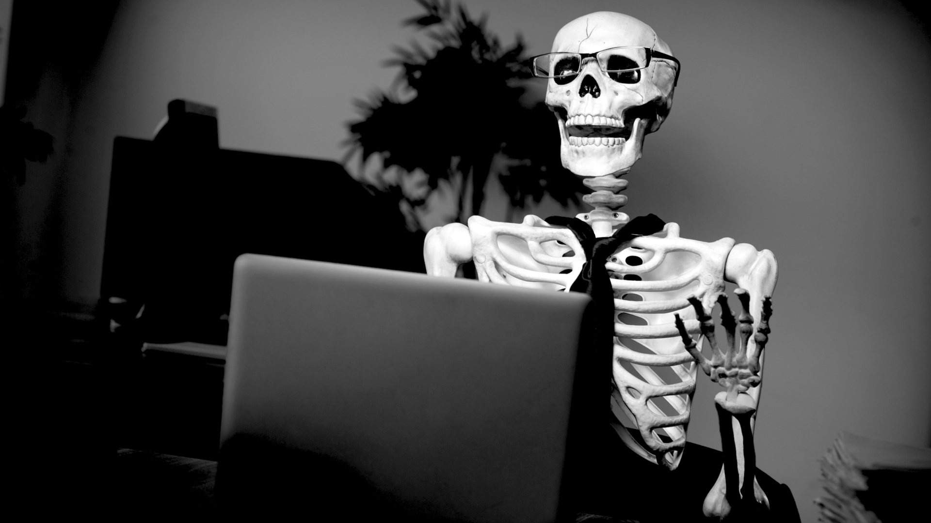 Skeleton and a laptop!