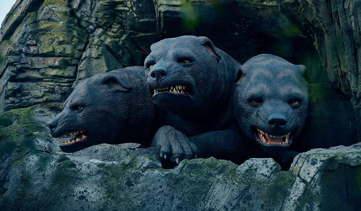 Fluffy the three headed dog
