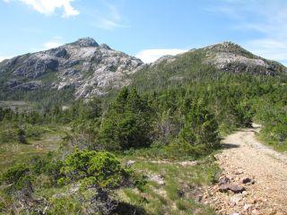Bokan Mountain