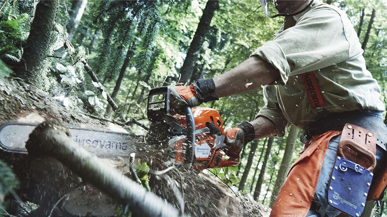Best chainsaws 2020: remove unwanted trees and branches whilst feeling ever so macho