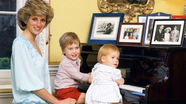 Prince Harry Prince William Princess Diana