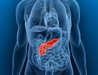 Pancreatic Cancer: Causes, Symptoms & Treatments | Live Science
