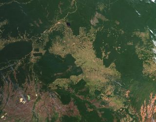 Deforestation in the state of Rondônia, in western Brazil, was visible to NASA's Earth-observing Terra satellite in July 2012.