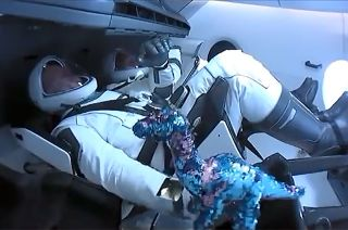 A blue and pink sequined dinosaur floats for the first time on board SpaceX's Crew Dragon capsule after entering Earth orbit. The doll, chosen by the crew's sons, served as the zero-g indicator.