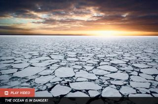 Sea ice in the Ross Sea