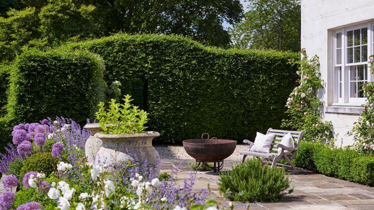 North-facing garden ideas