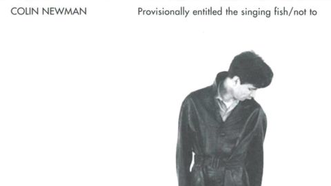 Colin Newman - A-Z/provisionally entitled the singing fish/ Not To ...