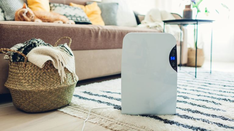 how to clean your air purifier, air purifier in living room near sofa
