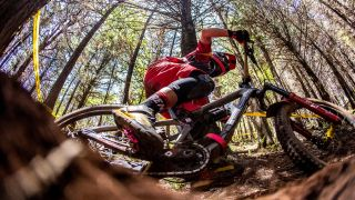 Best rear shocks for mountain bikes