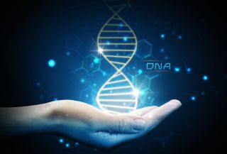 In an artist's image of DNA, a person's glowing hand hold a strand of genetic material.