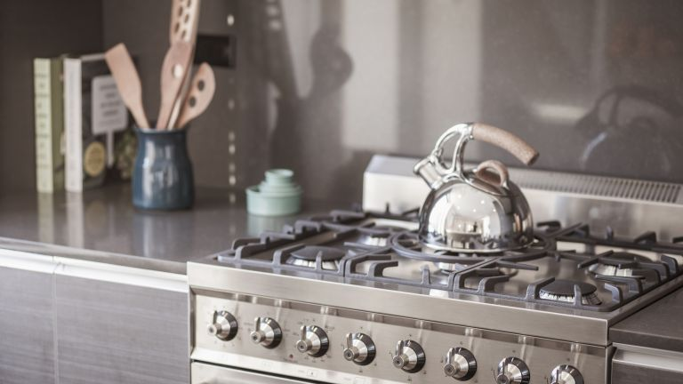 stainless steel hob with a stainless steel kettle on it