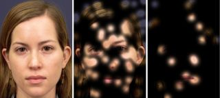 Neurons responded to a whole face, but showed much less response to a partially obscured face.