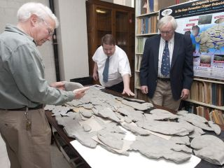 A large mysterious fossil spread out on a table at the University of Cincinnati.