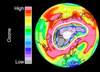 color-coded map of Earth's north polar region showing low ozone in the stratosphere