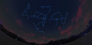 In the last days of May and early June, a cluster of carnivorous constellations appears high in the Northern Hemisphere sky.