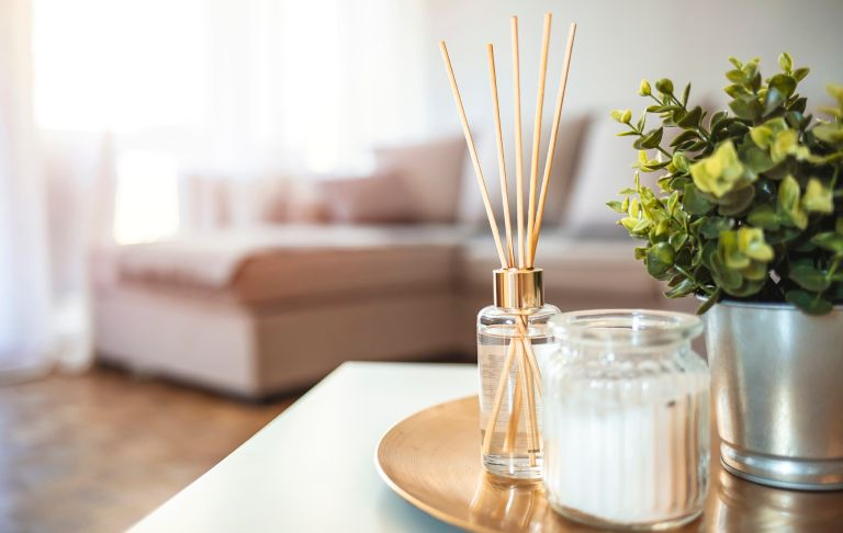best reed diffusers on table in home