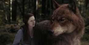 People Are Loving This Twilight Fan's Reaction To Finding Out How The Wolf Scenes Were Filmed
