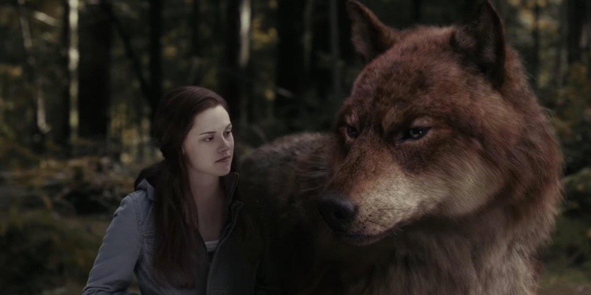 Bella petting Jacob in Twilight