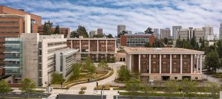 UCLA Stein Eye Institute