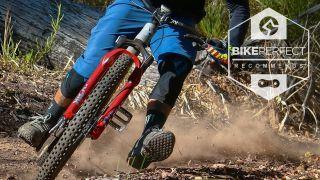 Nukeproof Horizon best MTB flat pedals
