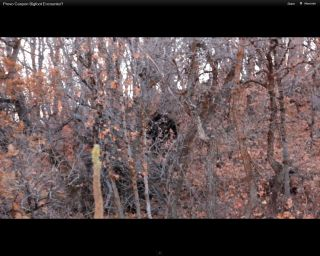 "A screengrab from the video of the Utah ""blobsquatch."""