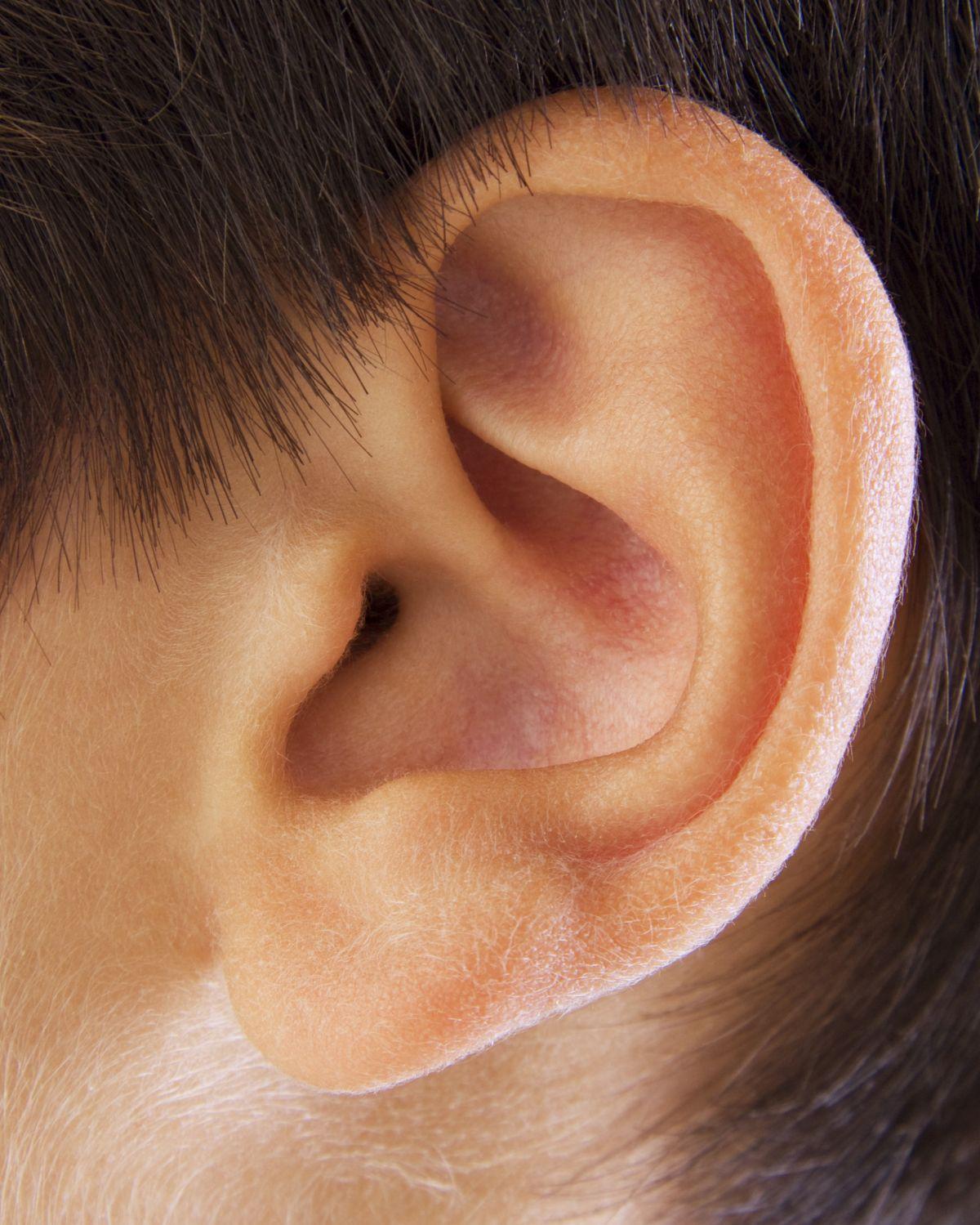 Фото уха человека