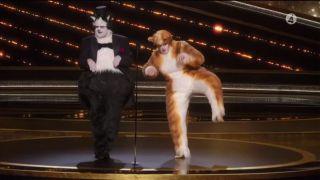 Oscars Cats skit