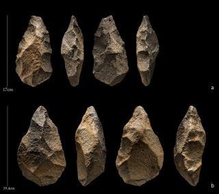 Hominin hand axes