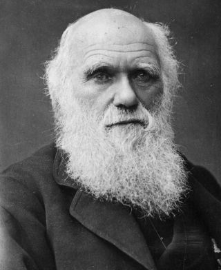One of the last photographs taken of Charles Darwin.