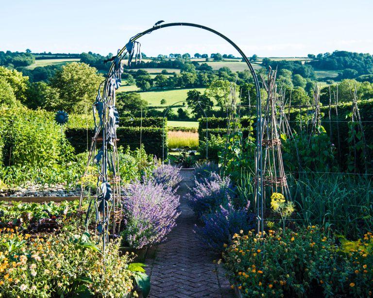 Arch in kitchen garden