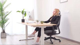 Flexispot Soutien Ergonomic Office Chair (OC10B)