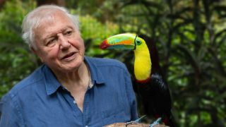 Sir David Attenborough Attenborough's Life in Colour