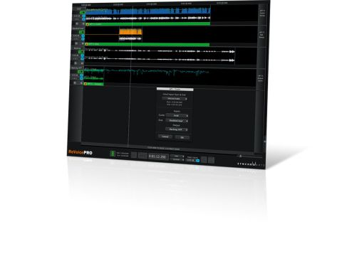 The interface looks like a simple DAW, with audio tracks laid out in a vertical stack, each with level and pan controls