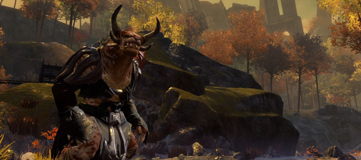 Guild Wars 2 peaked 400,000 concurrent users during