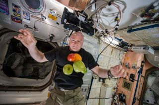 Scott Kelly Space Record
