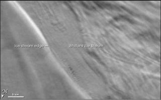 Whillans Ice Stream 2002