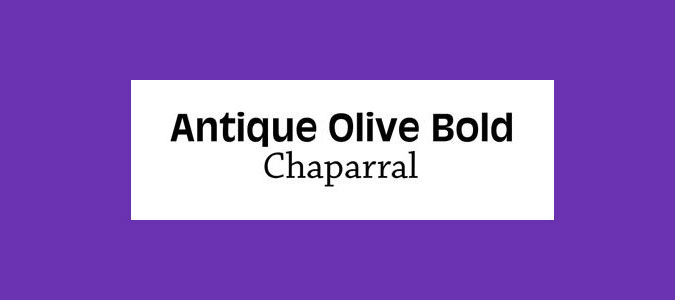 Antique Olive Bold and Chaparral font pairings