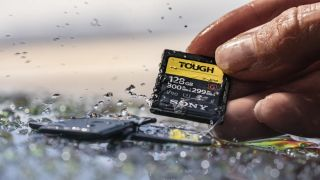 WARNING: These 9 Sony memory cards might corrupt your files