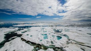 The Arctic landscape is dramatic and beautiful. It's also being transformed by climate change.