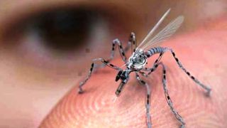 Mosquito drones – now available on Earth?