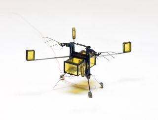 This tiny robot, called RoboBee, can fly, dive into water, swim, propel itself back out of water and safely land.