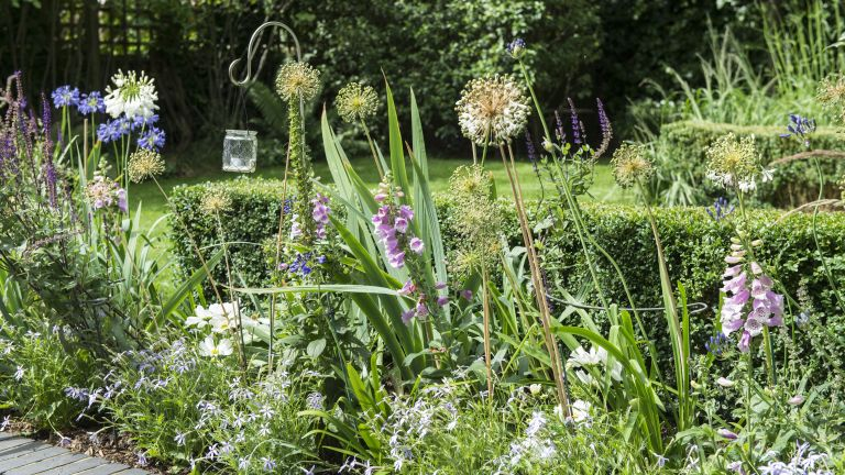 garden borders showing ideas for your flowerbeds