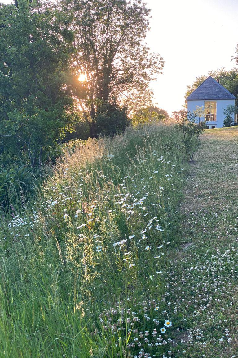 garden zoning - landscaping trends
