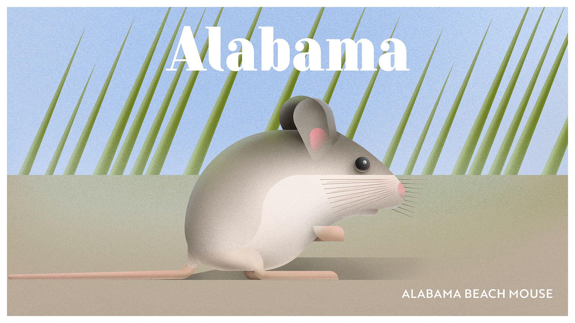 llustrators immortalise endangered wildlife