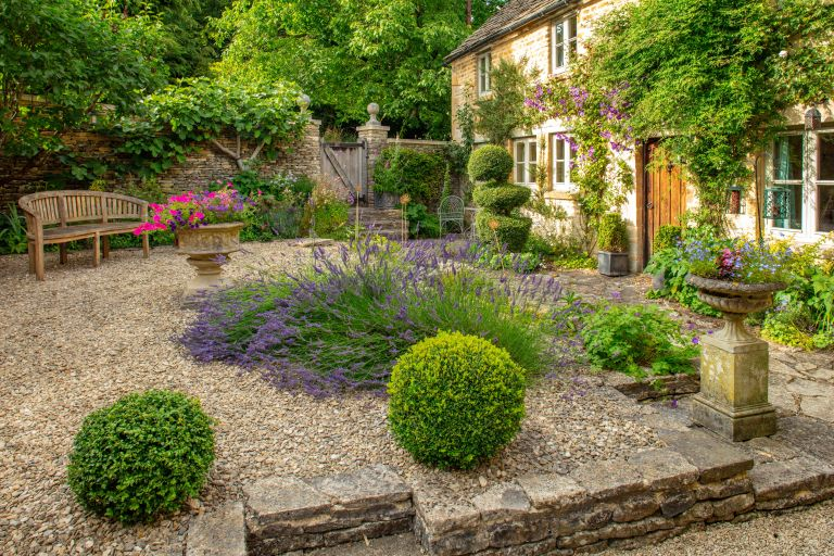 courtyard area in a cottage garden with lavender and a bench