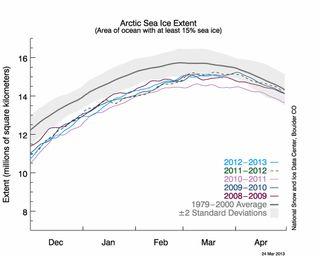 Arctic sea ice 2013