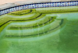 Did Hydrogen Peroxide Really Turn Olympic Pools Green? Not