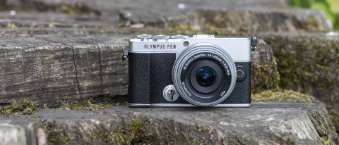 The Olympus PEN-EP7 mirrorless camera on a tree trunk
