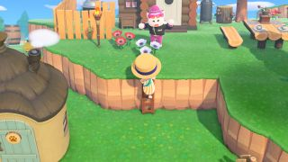 Animal Crossing: New Horizons ladder
